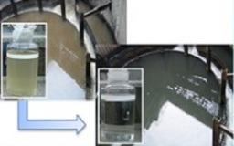 高速凝集処理プロセス      NCST<sup>®</sup>
